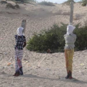 Xaqdoon Law Firm (Somaliland): Legal Pluralism, Death Penalty in the Somali Penal Code